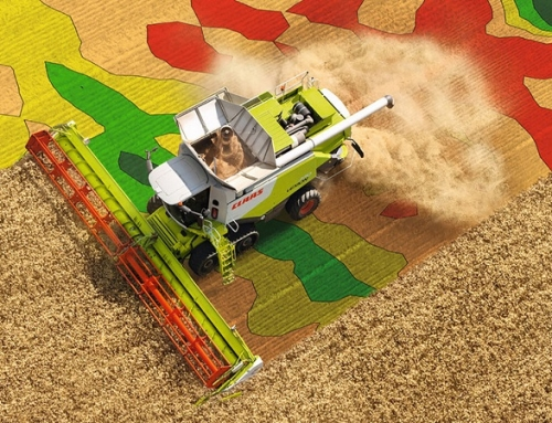 Previsione della Resa Agricola con Droni e Satelliti
